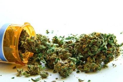 大麻取締法について「所持」は違法なのに「使用」はなぜ処罰されないのか?